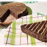Torta Morbida al Cioccolato e Avena
